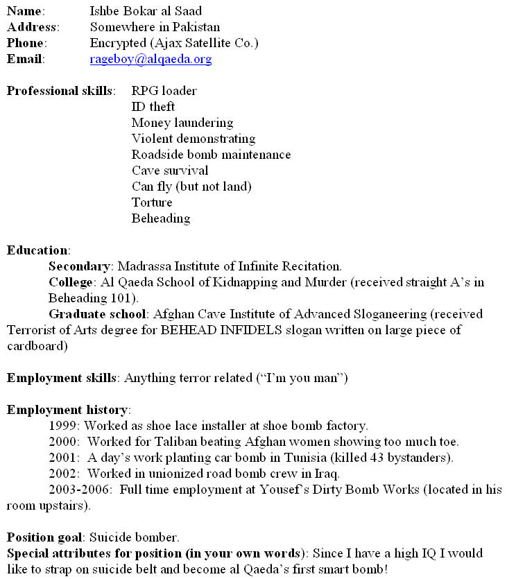 Fill In Resumes  Template